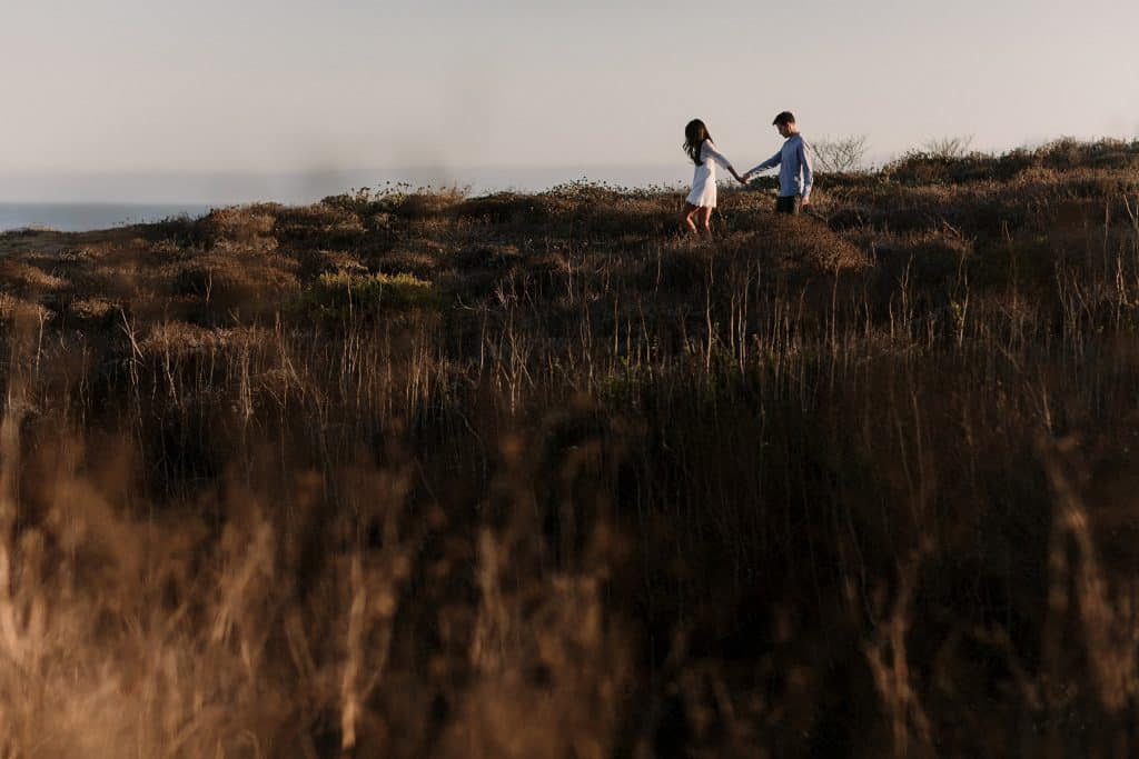 santa-cruz-engagement-photos-cover
