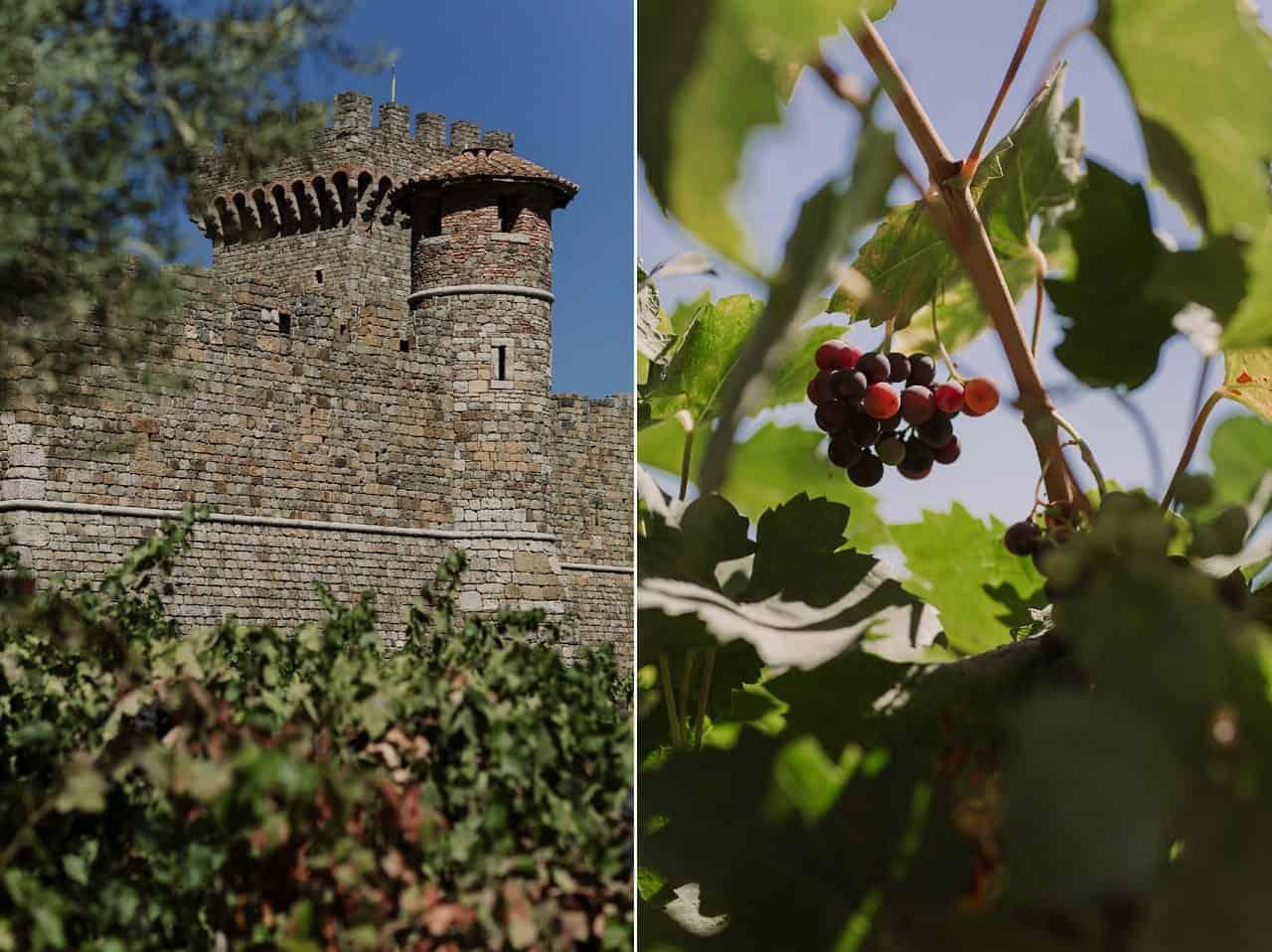 napa-vineyard-engagement-photos_0008