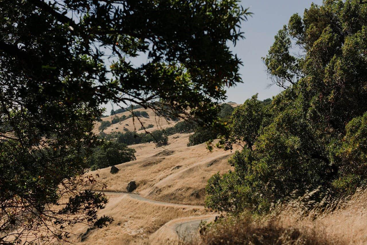 california-redwoods-wedding-mendocino_0002