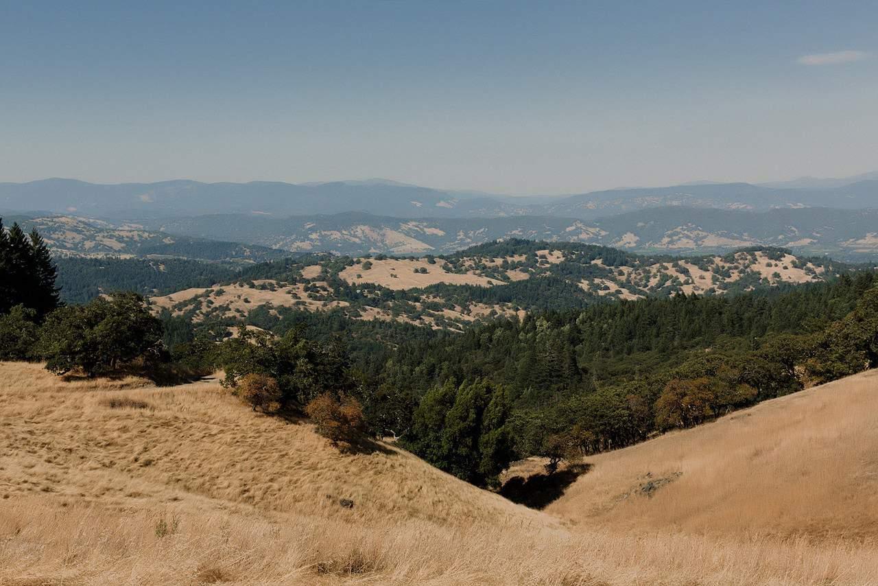 california-redwoods-wedding-mendocino_0004