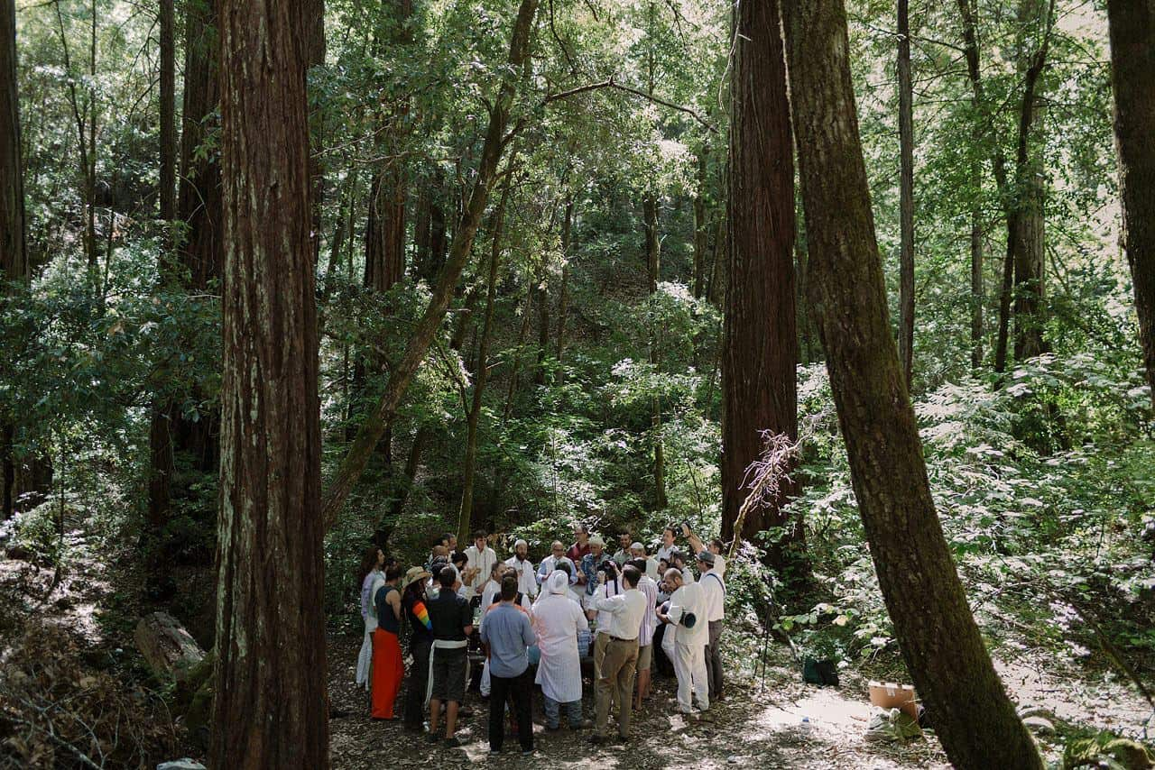 california-redwoods-wedding-mendocino_0057