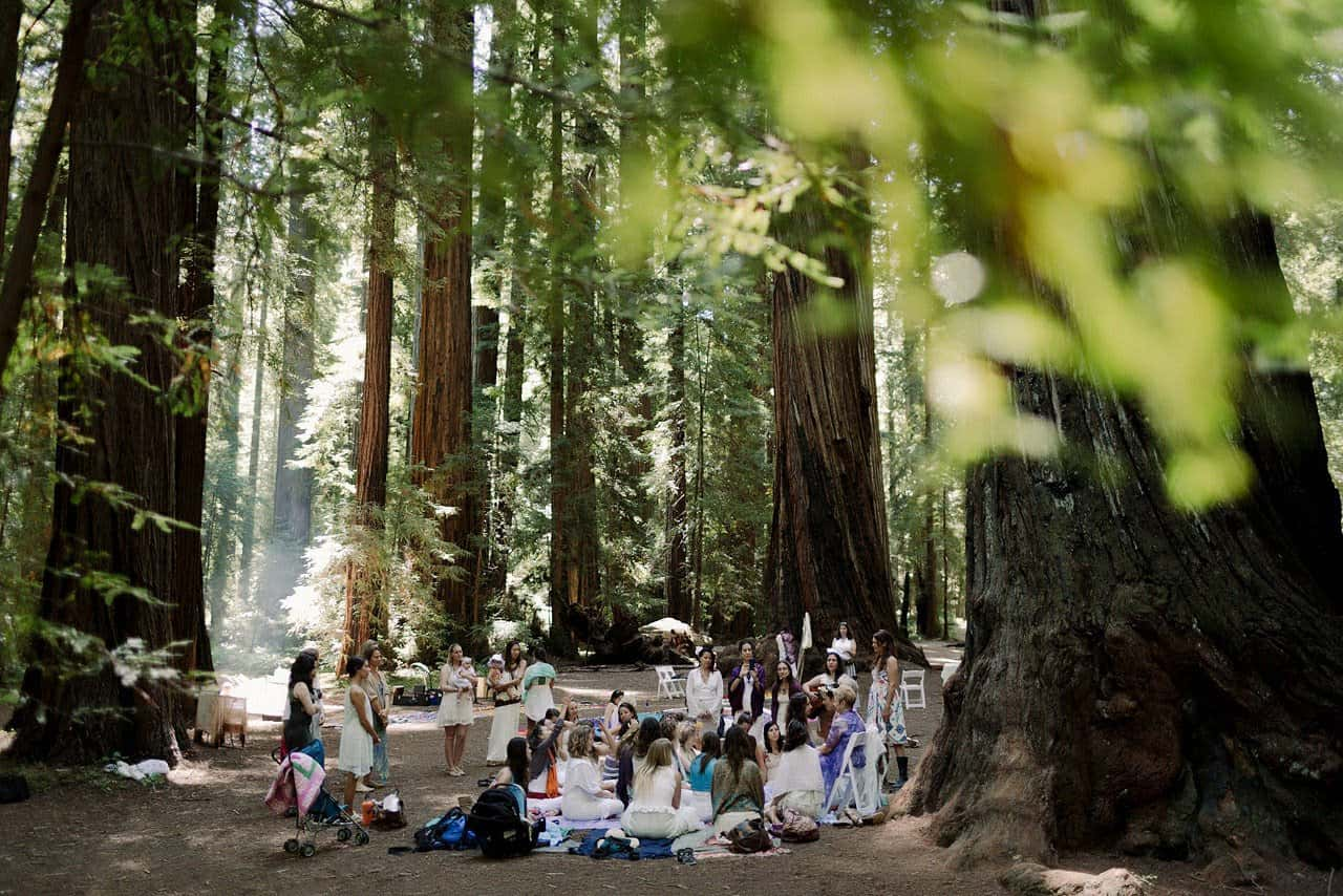 North Coast Redwoods wedding-3