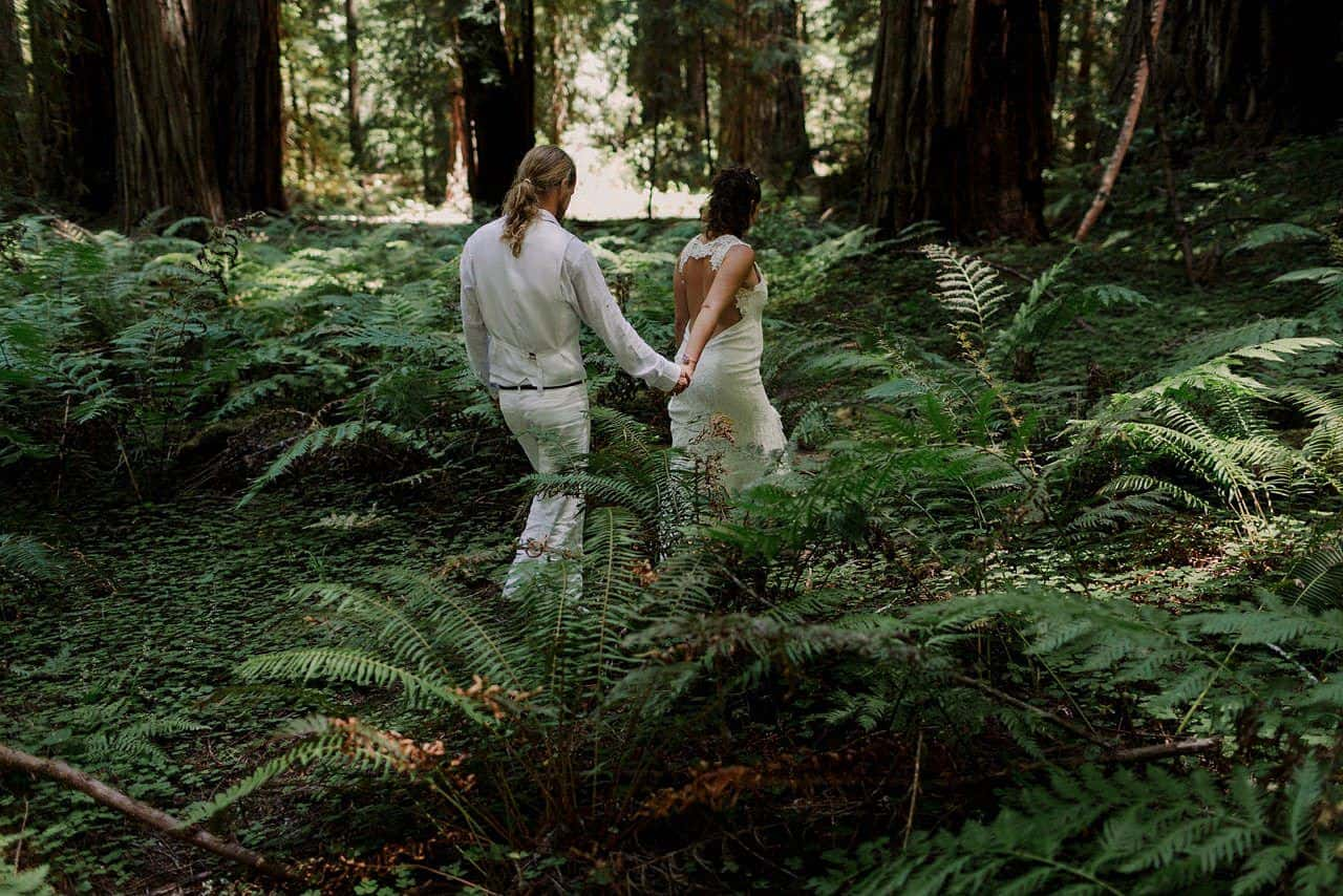 california-redwoods-wedding-mendocino_0105