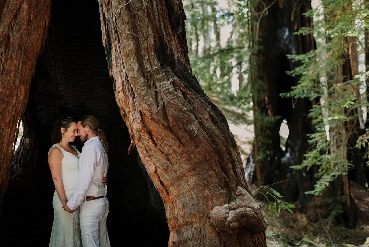 california-redwoods-wedding-mendocino_0106