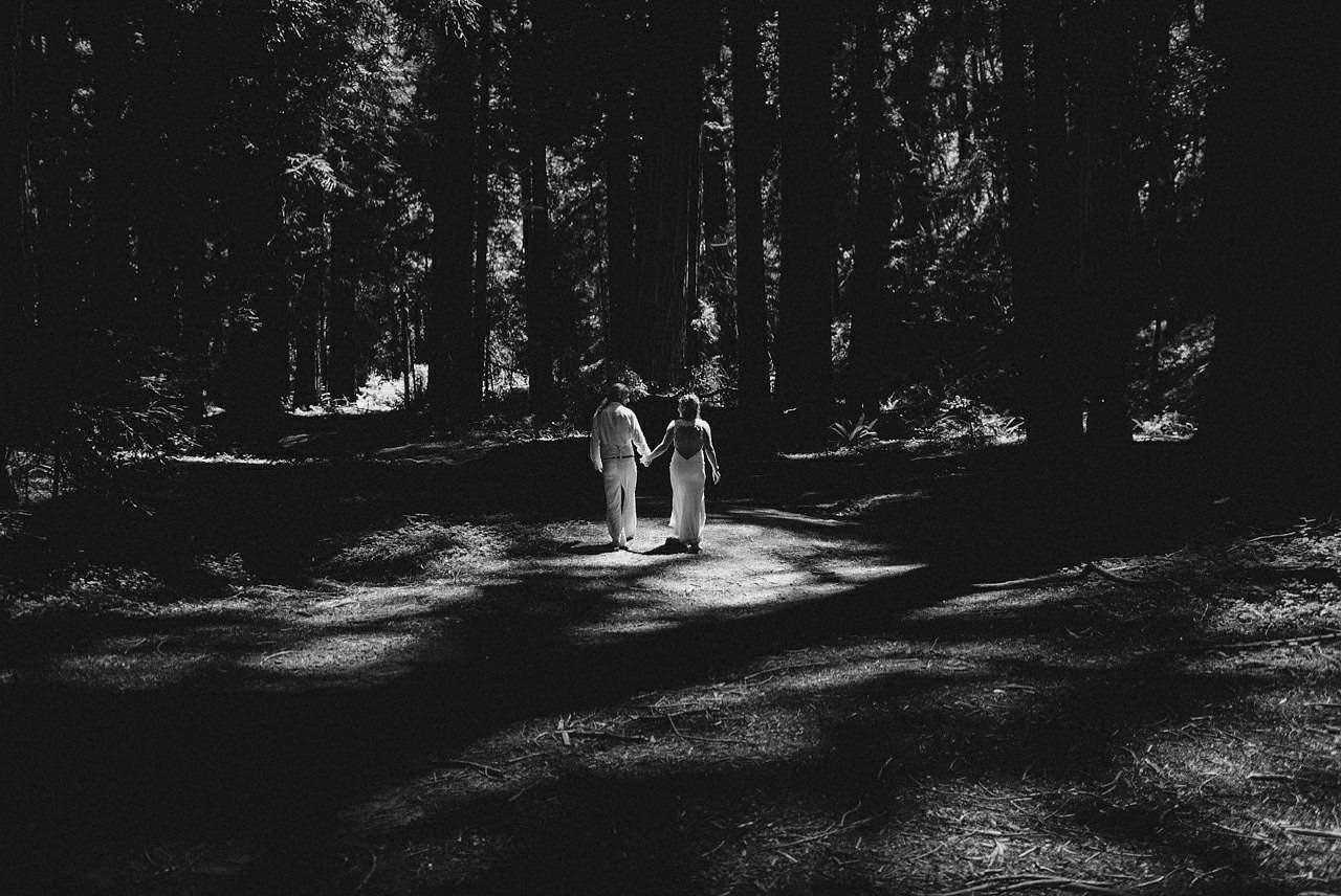 california-redwoods-wedding-mendocino_0111
