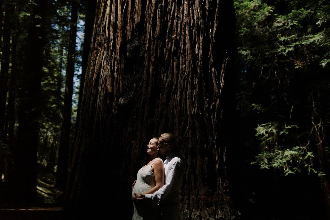 california-redwoods-wedding-mendocino_0114