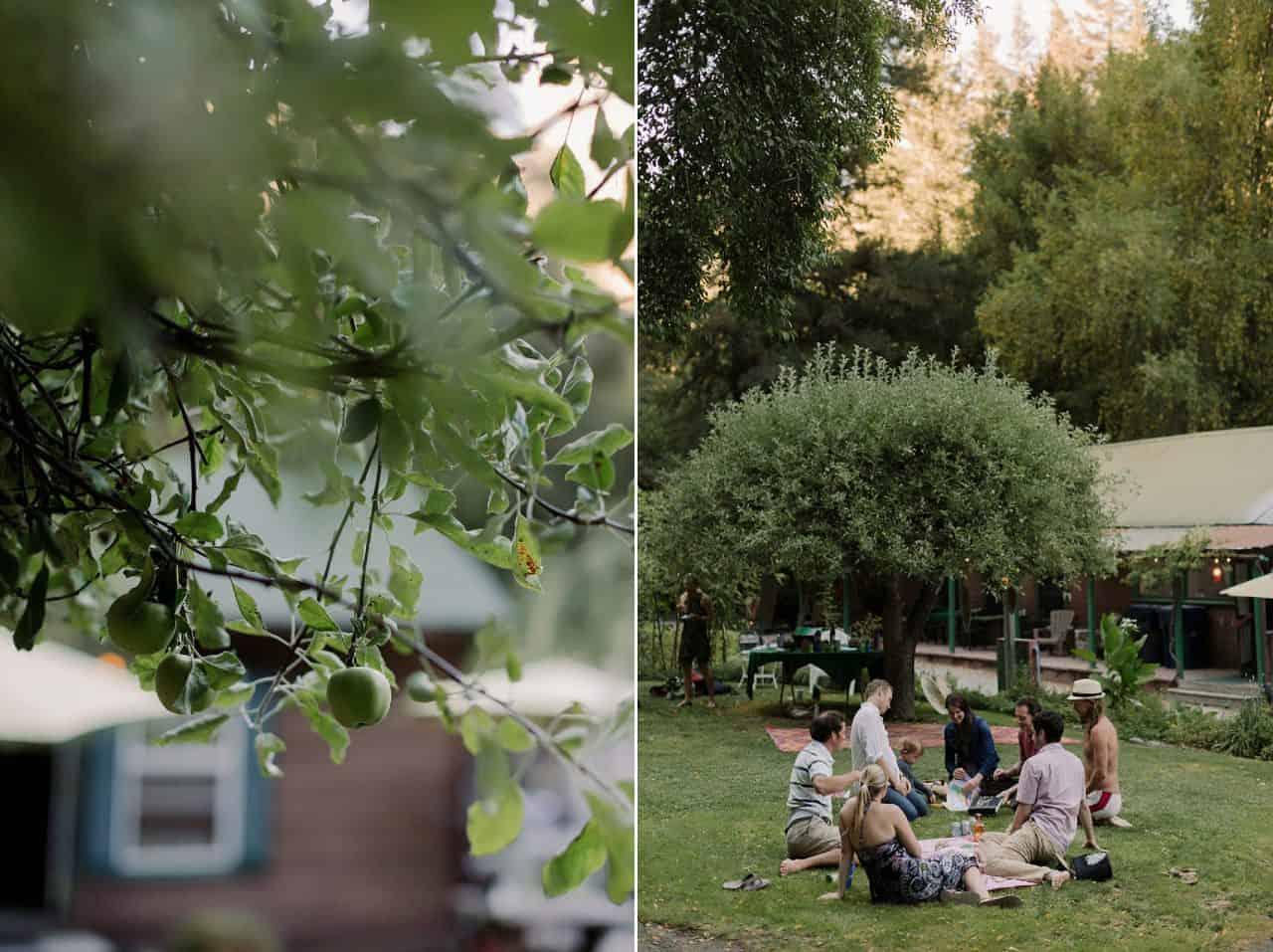 california-redwoods-wedding-mendocino_0116