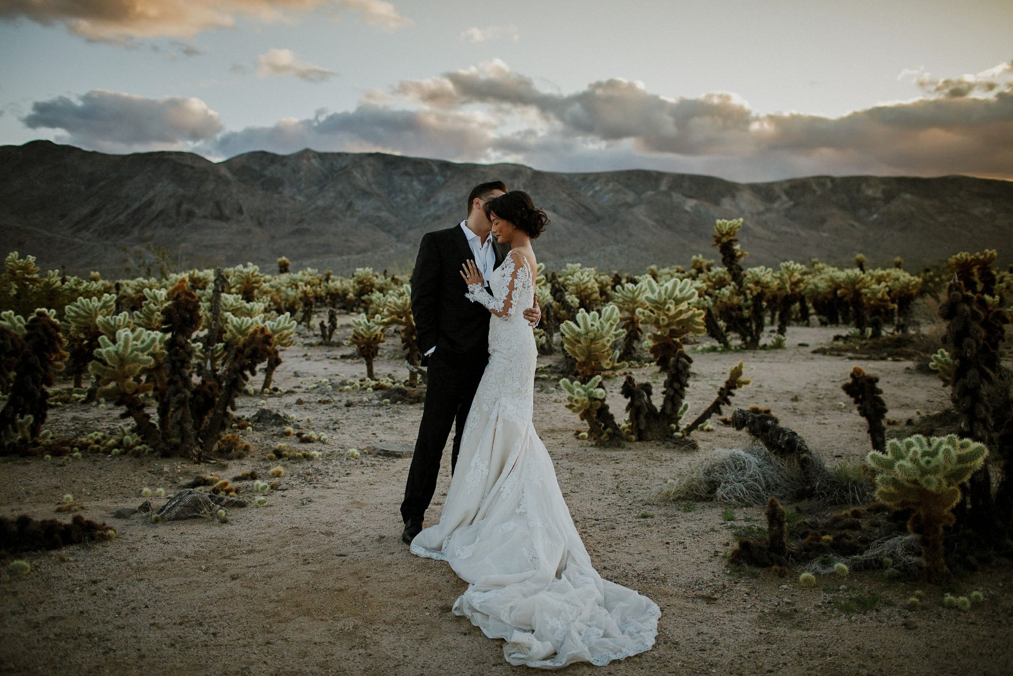 Joshua Tree Wedding Photographer Cover