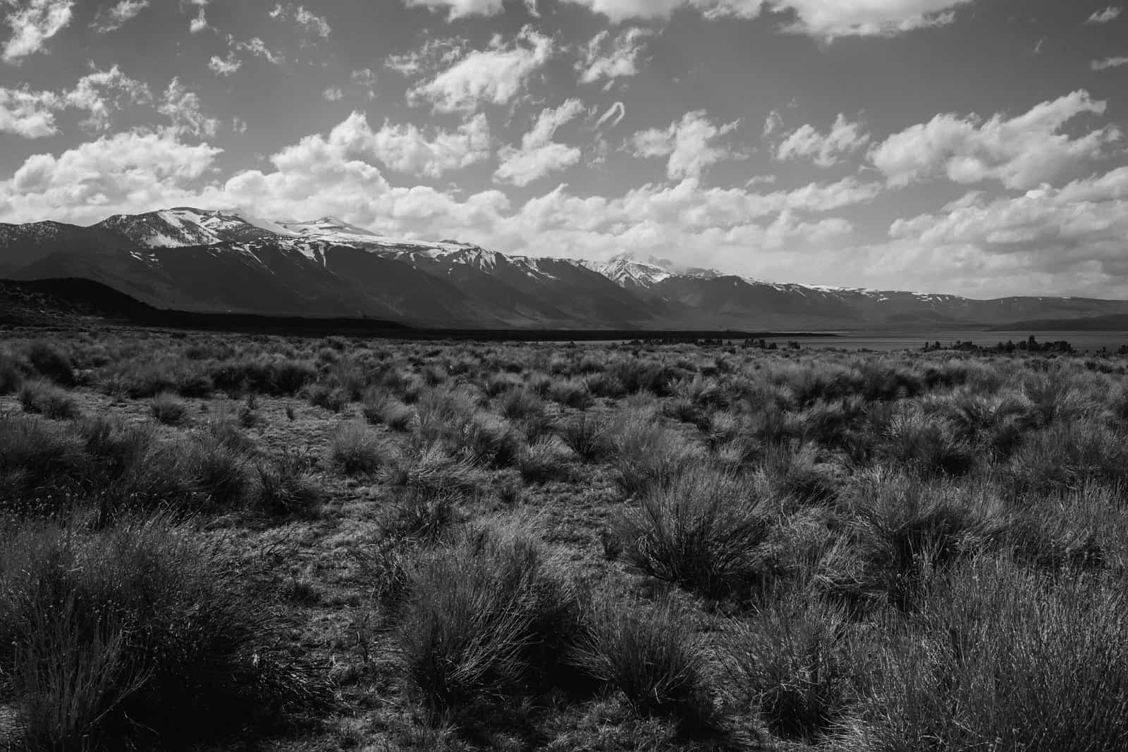 desert-photo-shoot-death-valley-roadtrip_0011