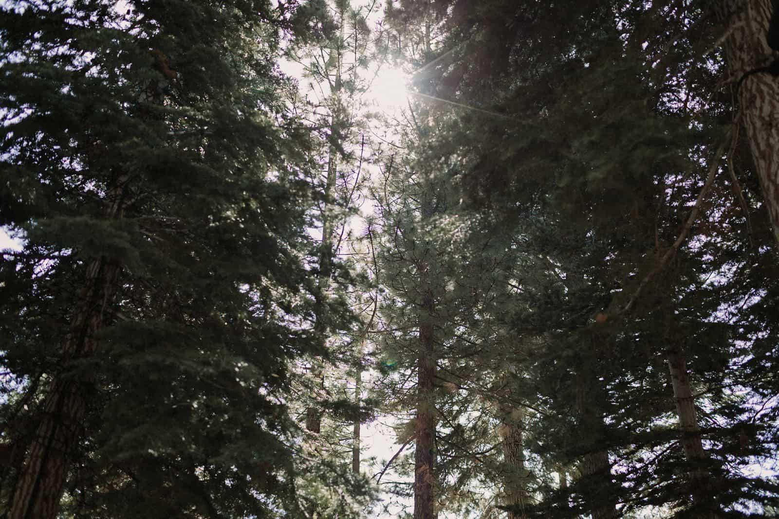 lake-tahoe-wedding-ritz-carlton_0019