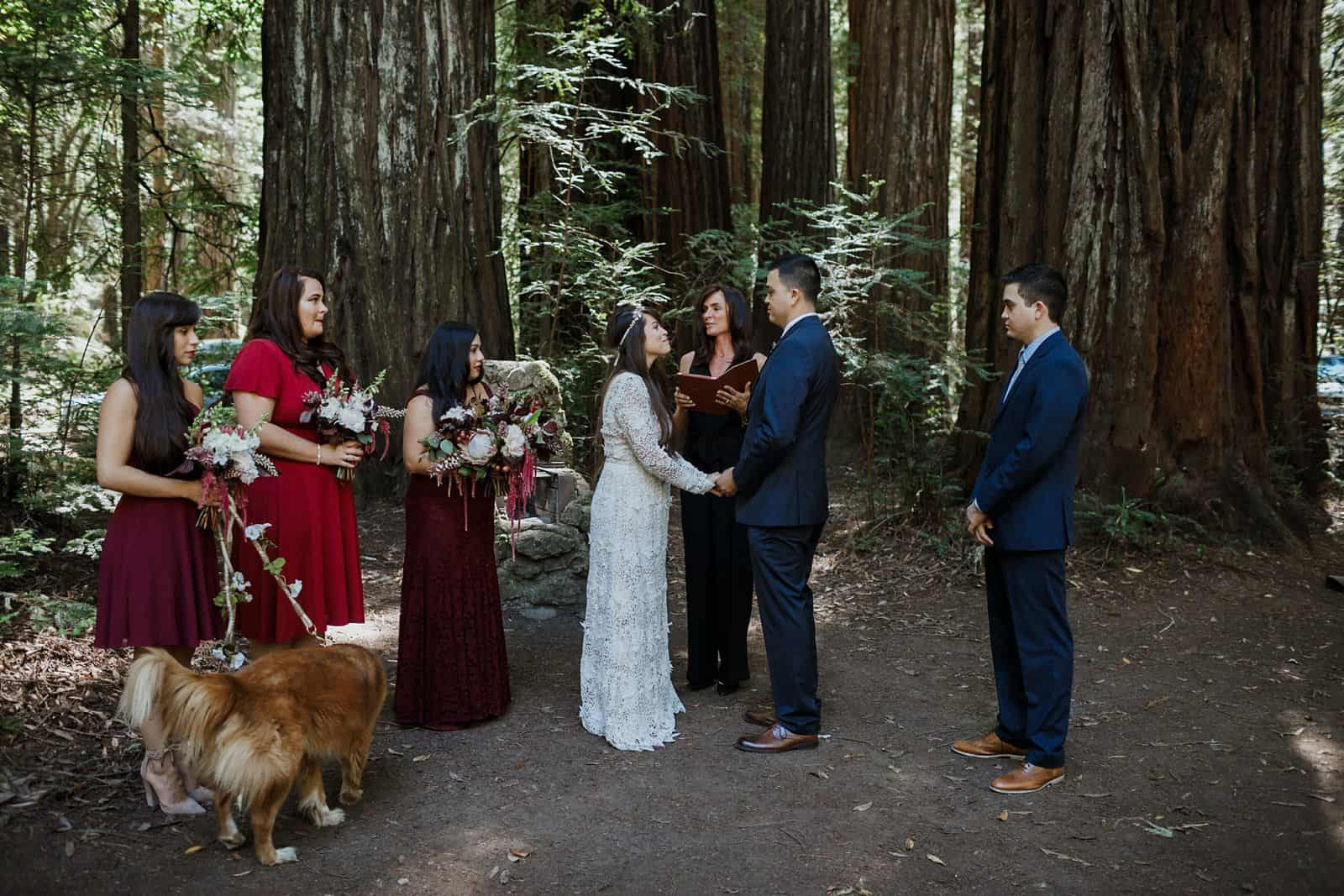 intimate-wedding-in-the-woods-sonoma_0028