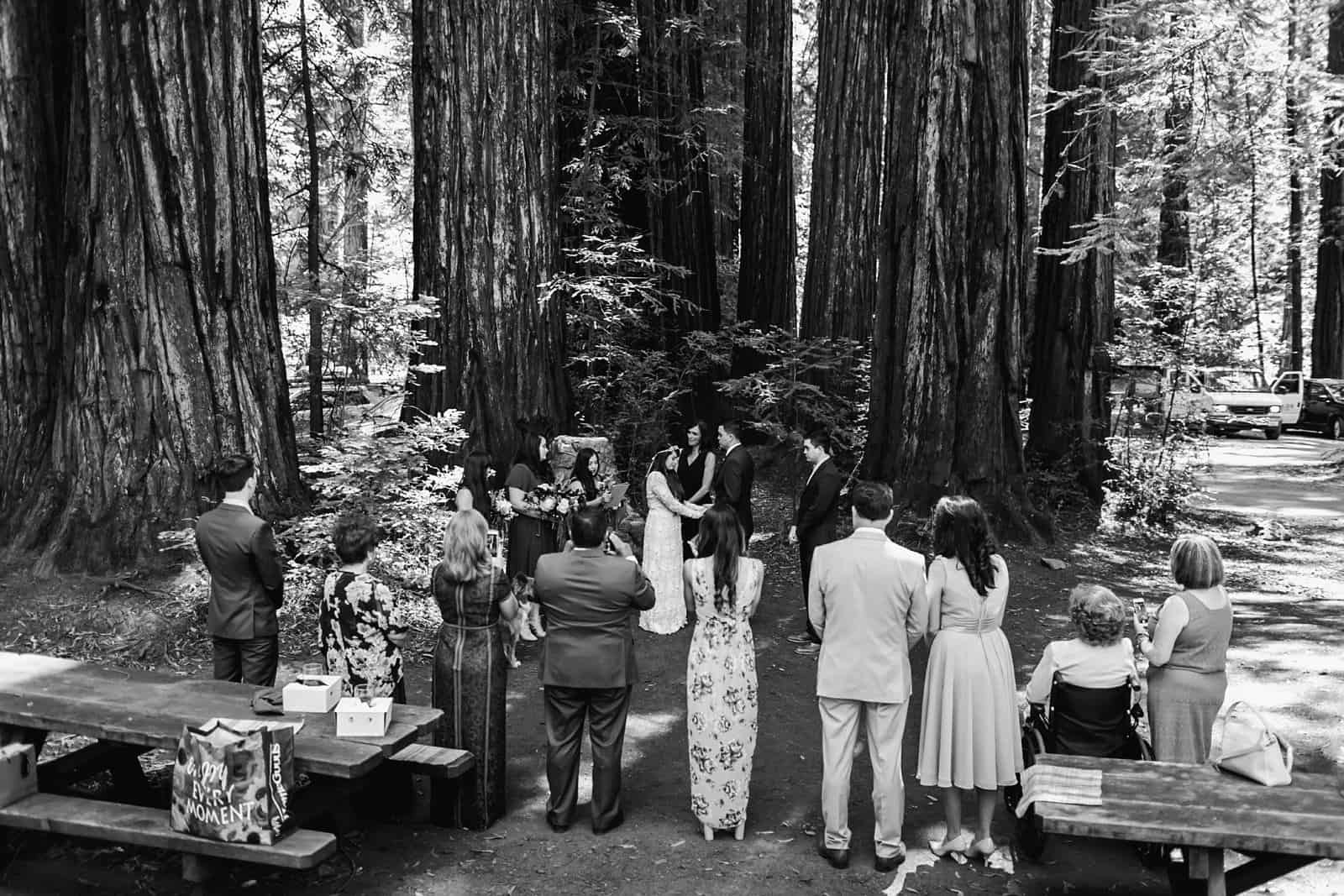 intimate-wedding-in-the-woods-sonoma_0033