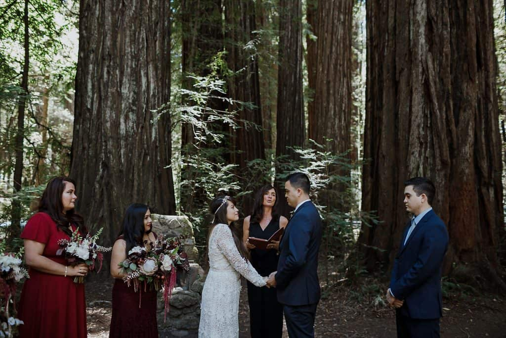 Armstrong Redwoods Wedding Photographer-1