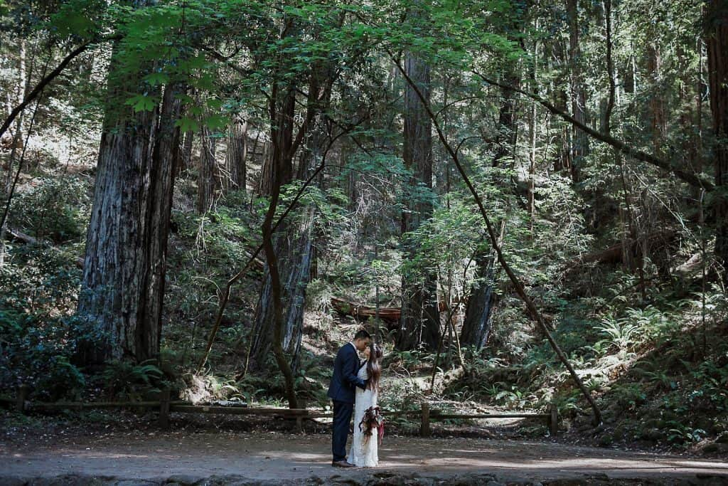 Armstrong Redwoods Wedding Photographer-2
