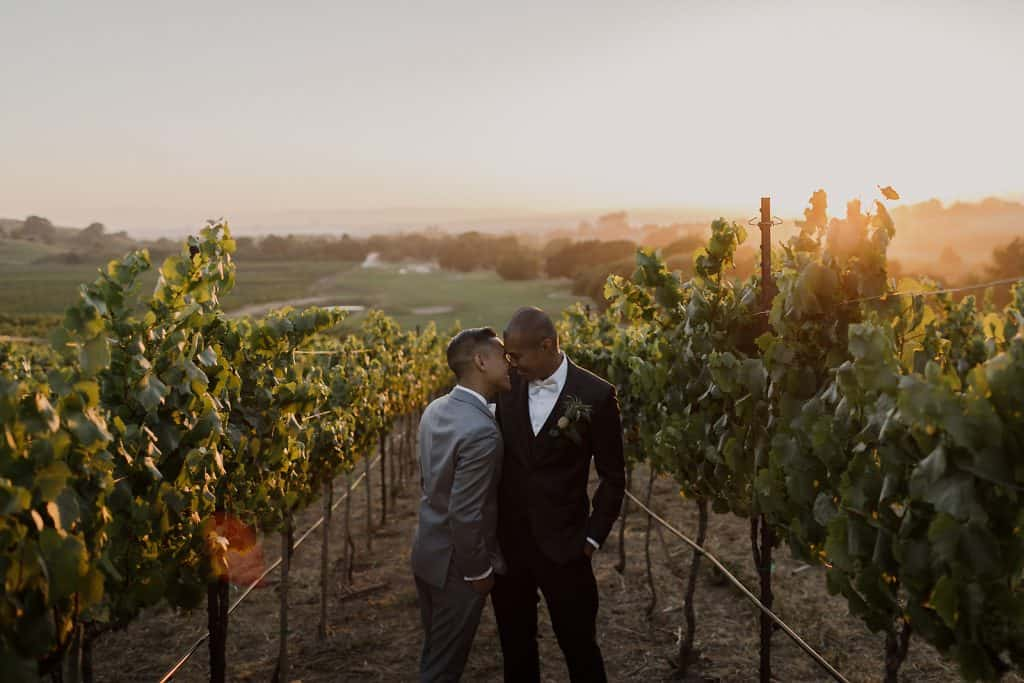 Napa Wedding Photographer-3