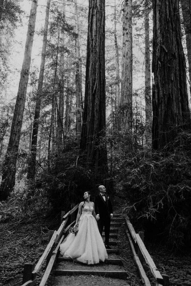 Muir Woods elopement portrait in the redwoods