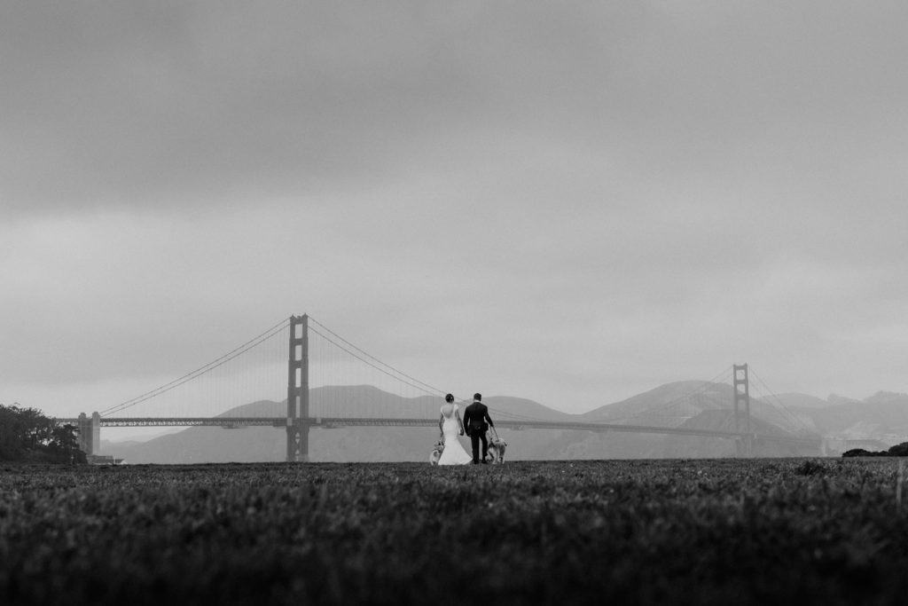 A walk at Crissy Field with their beloved dogs during their micro wedding